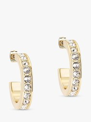 Ted Baker Seannia Swarovski Crystal Hoop Earrings Gold