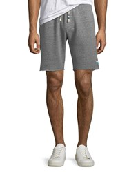 Sol Angeles Waves French Terry Shorts Gray