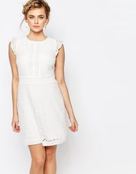 Oasis Premium Lace Skater Dress With Ruffle Detail Off White