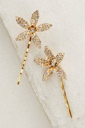 Anthropologie Orchid Bobby Pin Set Gold