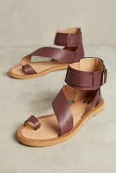Anthropologie Vanessa Wu Plum Gladiator Sandals Purple