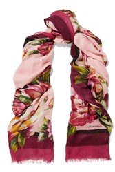 Dolce And Gabbana Floral Print Modal Cashmere Blend Gauze Scarf Pink