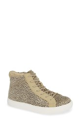 Coconuts By Matisse Skylark High Top Sneaker Taupe