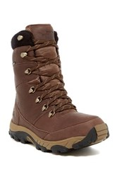 The North Face Chilkat Leather Insulated Tall Boot Brown