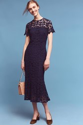 Anthropologie Midnight Lace Midi Dress Navy