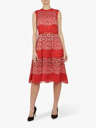 Ted Baker Inarra Colour Block Lace Tunic Pink Multi