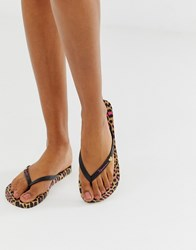 Ipanema Animal Print Flip Flops Black