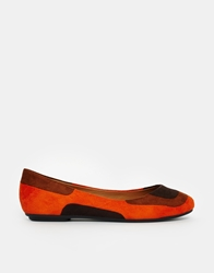 Chocolate Schubar Cybil Flat Shoes Orange