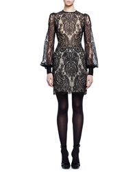 Alexander Mcqueen Long Sleeve Baroque Lace Dress Black