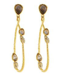 Alexis Bittar Vine Link Earrings With Labradorite
