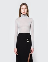 Which We Want Sheer Turtleneck In Grey