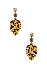Ettika Leaf Earrings Brown