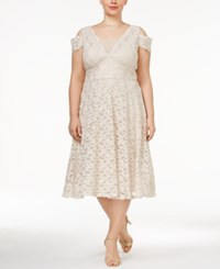 R And M Richards Plus Size Lace A Line Dress Champagne