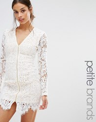Missguided Petite Zip Front Plunge Lace Mini Dress White