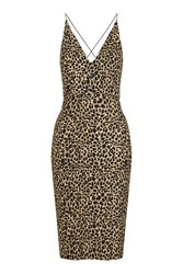 Topshop Animal Print Bodycon Dress Multi