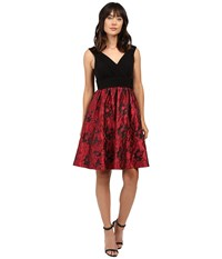 Adrianna Papell Portrait Bodice Fit And Flare Red Black Women's Dress