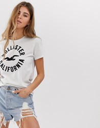 Hollister T Shirt With Classic Logo White