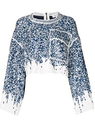 Aviu Sequin Embroidered Cropped Top White