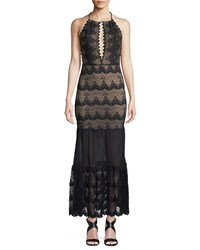 Nightcap Clothing Belle Nuit Halter Gown In Lace Black