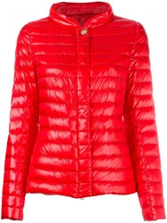 Herno High Neck Buttoned Jacket Red