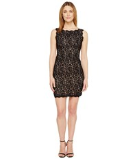 Adrianna Papell Petite Sleeveless Lace Cocktail Dress Black Nude Women's Dress Multi