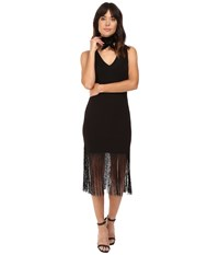 Bb Dakota Evezen Bodycon Ponte Dress W Long Fringe Black Women's Dress