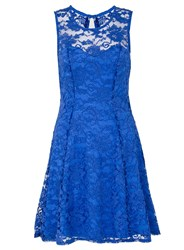 Quiz Royal Blue Sweetheart Lace Skater Dress Blue