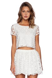 Lucca Couture Open Backed Lace Cropped Top White