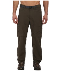 The North Face Paramount Peak Ii Convertible Pant New Taupe Green Men's Casual Pants Brown