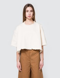 Ashley Rowe Tee Shirt In Cream