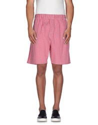 That's It Trousers Bermuda Shorts Men Red