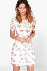 Boohoo Butterfly Print Corded Lace Shift Dress Multi