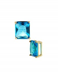 Emily And Ashley Emerald Cut Crystal Stud Earrings Blue