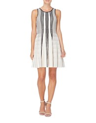 Catherine Malandrino Noreen Fit And Flare Dress Grey