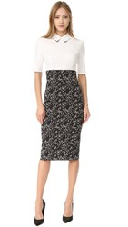 Lela Rose Fitted Sheath Dress Black Ivory