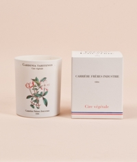 Candle Tiare I Carriere Freres Industrie I Studiohomme