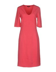 Boss Black Knee Length Dresses Fuchsia