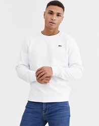 Lacoste Sport Logo Sweatshirt In White