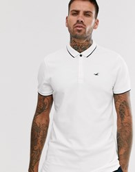 Hollister Icon Logo Modern Collar Tipping Pique Polo In White