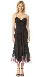 Preen Freya Dress With Detachable Slip Black Rainbow