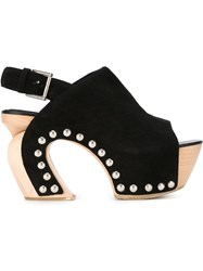 Alexander Mcqueen Wooden Clog Sandals Black