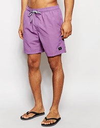 Globe Dana 16.5 Inch Swim Shorts Purple