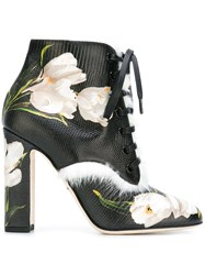 Dolce And Gabbana Tulip Print Ankle Boots Black