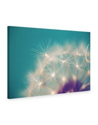 Marmont Hill Dandelion Puffs Painting Print On Wrapped Canvas Blue