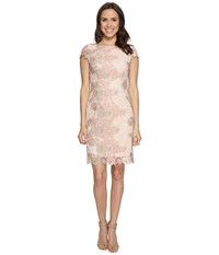 Tahari By Arthur S. Levine Lace Cut Out Back Sheath Dress Petal Blush Stone Women's Dress Pink