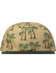 The Ampal Creative Tan Green Palms 6 Panel