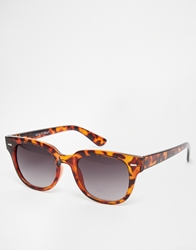 A. J. Morgan Aj Morgan Wayfarer Sunglasses Tort