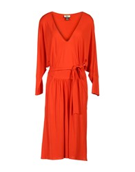Issa Knee Length Dresses Coral