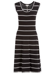 Max Studio Sleeveless Knit Dress Black Ivory