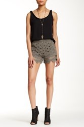Loveriche Lace Short Green
